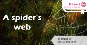 Read more about the article Robert Bruce and the spider