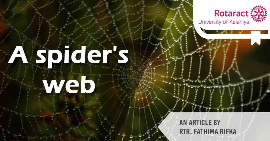 You are currently viewing Robert Bruce and the spider